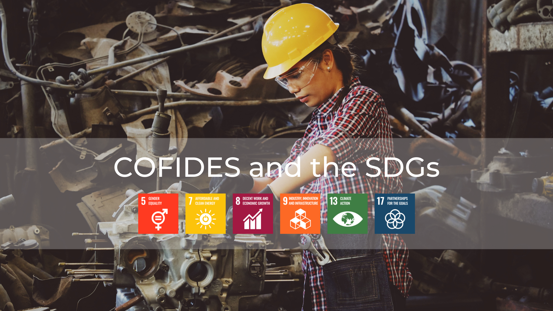 Image of COFIDES and its impact on the SDGs